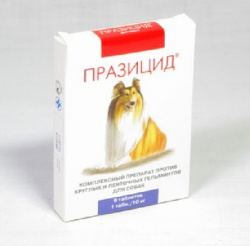 ya-sekretarsha-i-moy-nachalnik-menya-domogaetsya